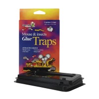 GLUE TRAPS MOUSE AND INSECTS #24102